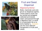 fruit and seed dispersal1