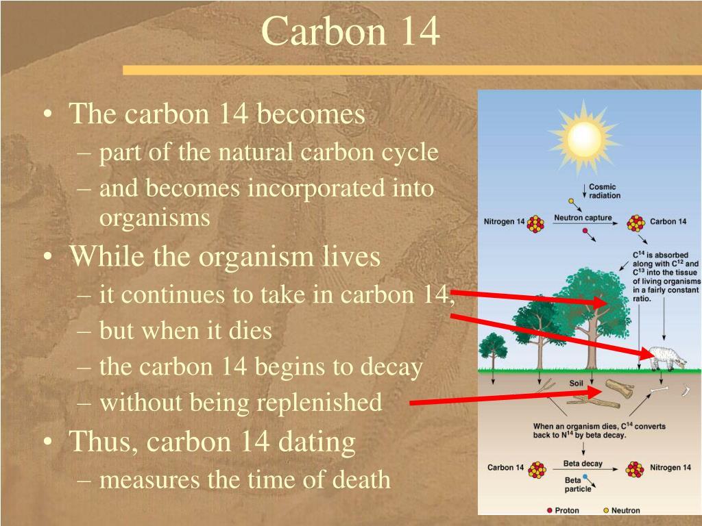 Carbon 14