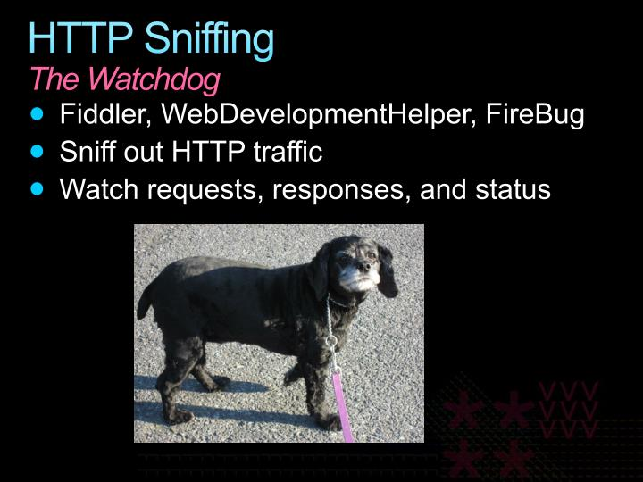 HTTP Sniffing