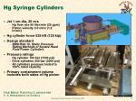 hg syringe cylinders