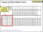 cause effect matrix form2