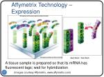 affymetrix technology expression