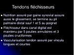 tendons fl chisseurs1