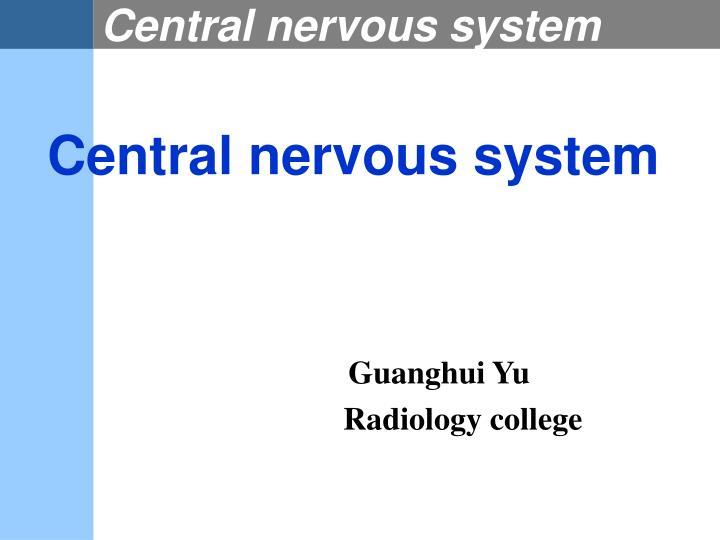 central nervous system n.
