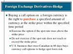 foreign exchange derivatives hedge32