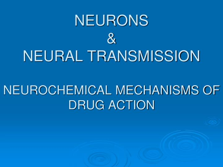 neurons neural transmission neurochemical mechanisms of drug action n.