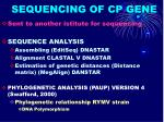 sequencing of cp gene