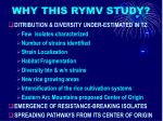 why this rymv study