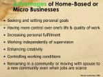 advantages of home based or micro businesses