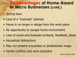 disadvantages of home based or micro businesses cntd