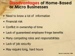 disadvantages of home based or micro businesses