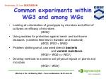 common experiments within wg3 and among wgs