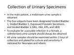 collection of urinary specimens