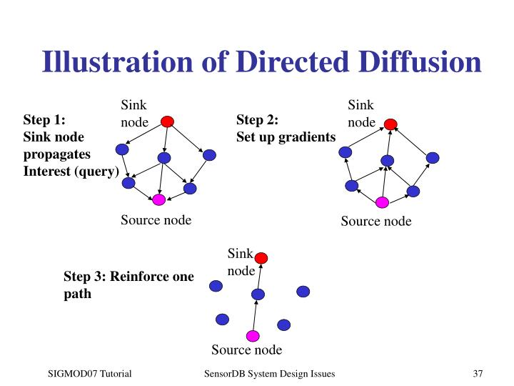 Illustration of Directed Diffusion