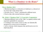 what is a database in the brain