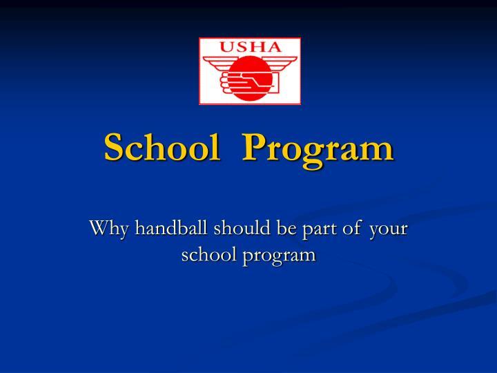 school program n.