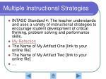 multiple instructional strategies