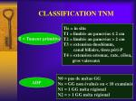 classification tnm