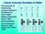 cellular automata simulation of water