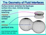 the geometry of fluid interfaces