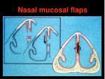 nasal mucosal flaps1