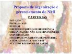proposta de organiza o e gerenciamento do nmi
