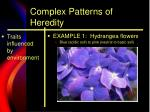 complex patterns of heredity4