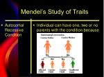 mendel s study of traits13