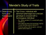 mendel s study of traits4