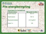 flis energiberegning