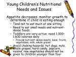 young children s nutritional needs and issues1