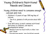 young children s nutritional needs and issues2