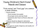 young children s nutritional needs and issues4