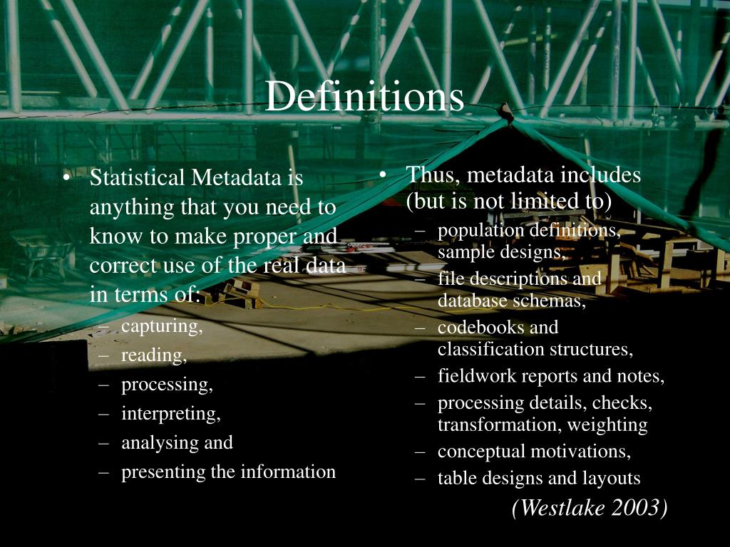Statistical Metadata is anything that you need to know to make proper and correct use of the real data in terms of: