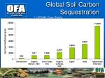 global soil carbon sequestration