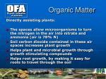 organic matter3