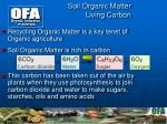 soil organic matter living carbon