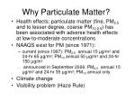 why particulate matter
