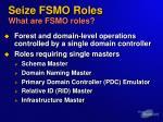 seize fsmo roles what are fsmo roles