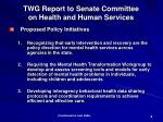twg report to senate committee on health and human services