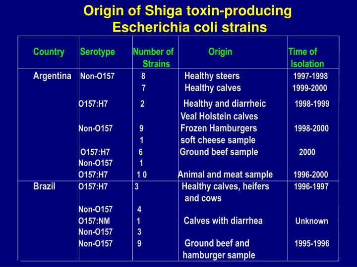 Origin of Shiga toxin-producing