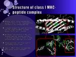 structure of class i mhc peptide complex