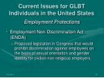 current issues for glbt individuals in the united states4