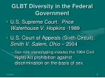 glbt diversity in the federal government6