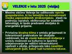 velenje v letu 2025 vizija
