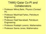 tamu qatar co pi and collaborators