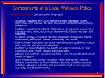 components of a local wellness policy