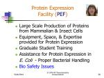 protein expression facility pef