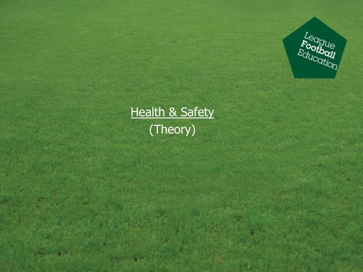 health safety theory n.