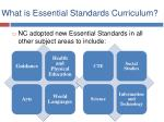 what is essential standards curriculum